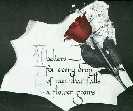 I believe for every drop of rain that falls, a flower grows